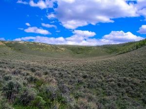 Wyoming sagebrush!